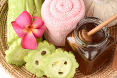 Face mask recipe with balsam apple, balsam pear, bitter cucumber, bitter gourd, bitter melon, and honey. Royalty Free Stock Photography