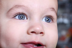 Face of nice baby close up Stock Image