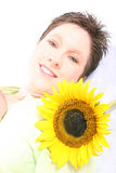 Face od a Sunflower Royalty Free Stock Images