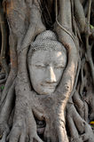 Face Of Ruin Image Of Buddha Stock Photography