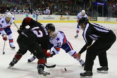 Face off. Referee drops the puck in the face off at the pro hockey game Royalty Free Stock Images