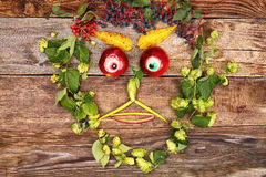 Face out of fruits and plants Royalty Free Stock Images