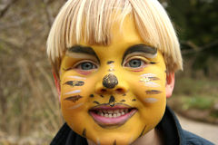 Face Paint. Tiger Face Paint royalty free stock image