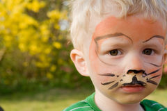 Face paint tiger boy child. Face paint on child. boy as tiger with make-up in garden royalty free stock photography