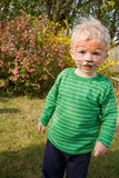 Face paint tiger boy child. Face paint on child. boy as tiger with make-up in garden royalty free stock photos