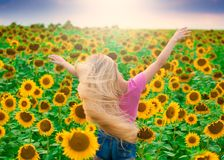 Face, pink t-shirt, jeans shorts, sunflower, back, close up Stock Images