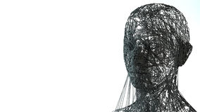 Face portrait. 3D wireframe head Royalty Free Stock Photography