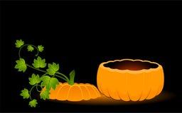 face of pumpkin Stock Photos