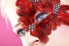 Face with red feathers close up Royalty Free Stock Photo