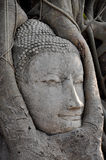 Face of Ruin image of Buddha Stock Photos