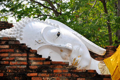 Face of Ruin white image of Buddha Stock Photo