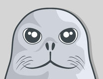 Face seal Royalty Free Stock Photo