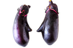 Face shaped two Eggplant on white background Stock Images