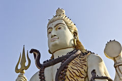 Face of Shiva Royalty Free Stock Image