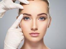 Beautician touching woman face. Face skin check before plastic surgery. Beautician touching woman face Royalty Free Stock Photos
