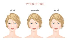 Face skin types. Vector Stock Photography