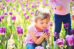 Face and skincare. allergy to flowers. Summer girl fashion. Happy childhood. Little girl in sunny spring. Small child. Natural beauty. Childrens day royalty free stock photos
