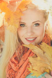 Face of smiling girl with yellow maple leaves Stock Image