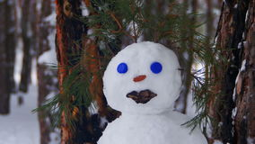 Face of Snowman in a Pine Forest Standing with Snow-covered Christmas Trees stock video footage