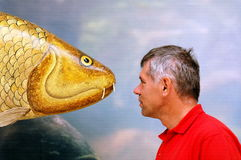Face to face. Big fish (not real) and man face to face royalty free stock photos
