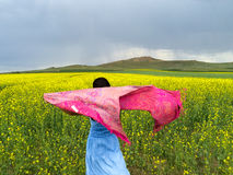 FACE TO RAPE FLOWERS IN WIND Stock Image