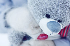 Face of toy bear Stock Photography