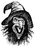 Face of witch Stock Photos