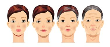 Face of woman at different ages, vector illustration, human face in different periods of life, young girl, middle-aged woman, elde Stock Images