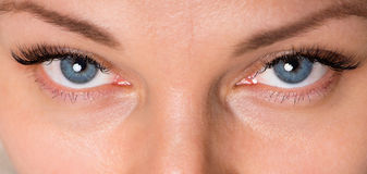 Face woman with eyes and eyelashes Stock Images