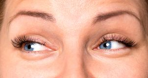 Face woman with eyes and eyelashes. Close up front portrait of beautiful happy woman face with gray eyes Stock Photos