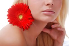 Face of woman and flower. Face of beautiful young woman with red flower Royalty Free Stock Photos