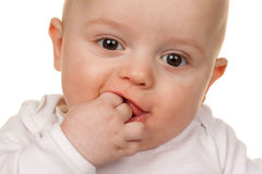 Face of a wondering baby Stock Images