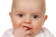 Face of a wondering baby Stock Image