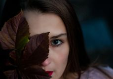 The face of a young girl, with a beautiful make-up, is closed half-yellowish green leaf, in the autumn day. royalty free stock photo