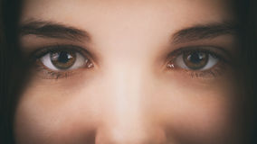 Face of a young girl with hazel brown green eyes Stock Photography