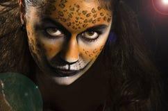 Tigress Royalty Free Stock Photos