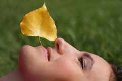 Face of a young woman and autumn leaf Stock Image
