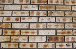 Facebrick Wall - Step 04 Stock Images