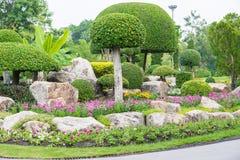 Facendo il giardinaggio ed abbellire con gli alberi decorativi Fotografia Stock Libera da Diritti