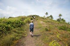 Facendo un'escursione alla cima immagini stock libere da diritti