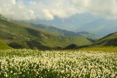 Facendo un'escursione alla montagna Furgler Fotografie Stock Libere da Diritti