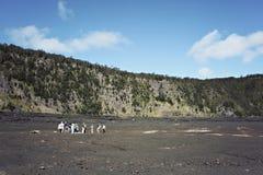 Facendo un'escursione alla sosta nazionale dei vulcani dell'Hawai Fotografia Stock