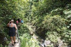 Facendo un'escursione attraverso la foresta pluviale tropicale fotografia stock libera da diritti