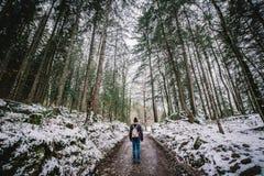 Facendo un'escursione attraverso la foresta riempita neve Immagini Stock Libere da Diritti
