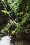 Facendo un'escursione attraverso la gola di Wolfsklamm sulle scale Alpi europee PA Fotografia Stock Libera da Diritti