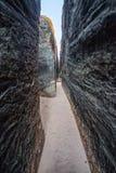 Facendo un'escursione attraverso un canyon della scanalatura negli aghi Immagine Stock