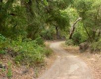 Facendo un'escursione in Crystal Cove State Park fotografia stock libera da diritti