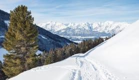 Facendo un'escursione dow una traccia attraverso la neve nelle montagne dell'alpe in Aust Fotografia Stock