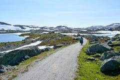 Facendo un'escursione e l'itinerario della bicicletta lungo Flam allineano in Norvegia Immagine Stock Libera da Diritti