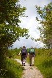 Facendo un'escursione in Hainich Fotografia Stock Libera da Diritti